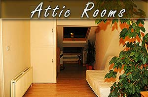 attic rooms in sheffield